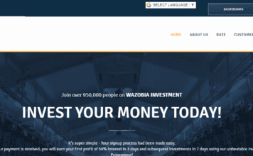 wazobia investment